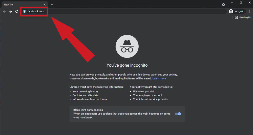 browse incognito browser